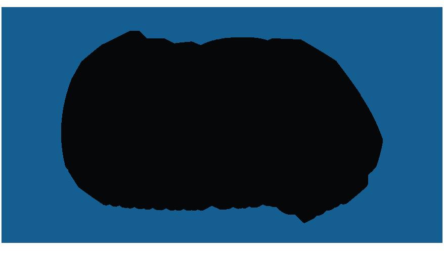 Omni Group - Omni Group of Companies - National Gases Ltd.